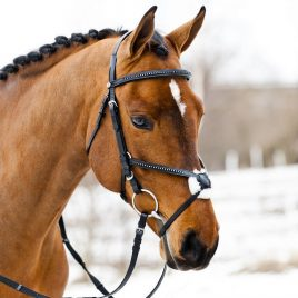 Diamante Bridle with Grackle Noseband