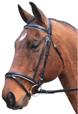 Hanoverian Event Bridle W/ Piping