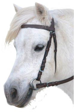Snaffle Bridle without Nose band