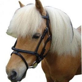 Mini Leather HNB Bridle with Reins,